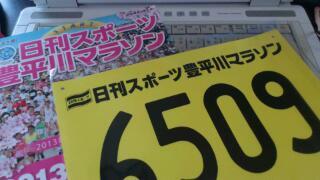 豊平川マラソン大会